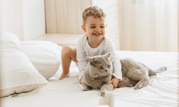 Cats and babies, cat and toddler, kid friendly cats