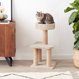 AmazonBasics Cat Activity Tree with cat sitting on top, cat activity gym, cat scratching post