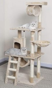 Go Pet Club 62 inch cat tree, cat condo, cat tower