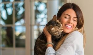 Cat cuddle, independent cats, which cats can be left alone?